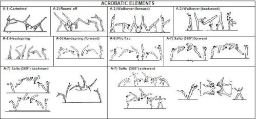 7 1 Acrobatic Elements Amp Prohibited Moves 2013 2016