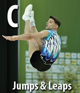 2013-2016-AEROBIC-GYMNASTICS-CODE-OF-POINTS-French_a978.html
