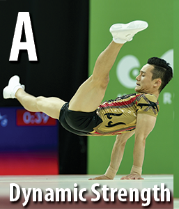 GROUP-A-DYNAMIC-STRENGTH_r16.html